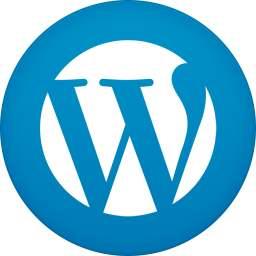 大型WordPress网站遇到卡顿、占资源的解决方案是什么? (https://www.yunsxr.com/) WordPress基础教程 第1张