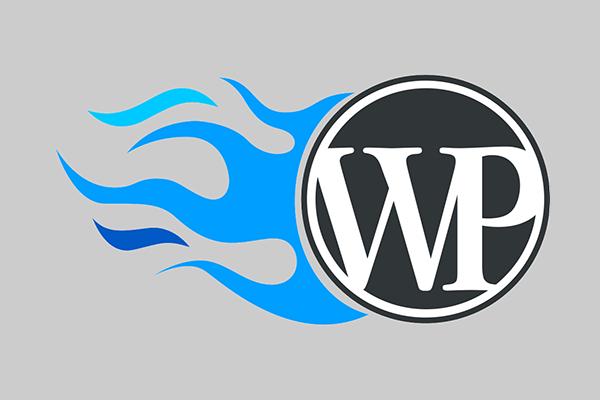 WordPress如何调用js代码? (https://www.yunsxr.com/) WordPress开发教程 第1张
