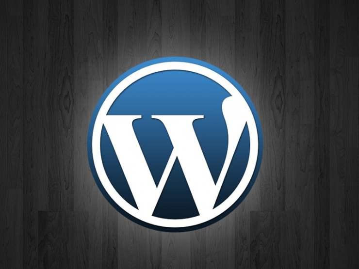 如何给WordPress网站添加Javascript代码? (https://www.yunsxr.com/) WordPress入门 第1张