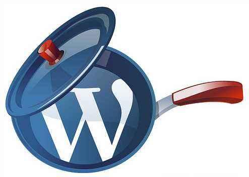 WordPress主题开发中常用代码分享 (https://www.yunsxr.com/) WordPress入门 第1张
