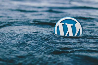 自定义WordPress登录以回复链接及文字方法 (https://www.yunsxr.com/) WordPress开发教程 第1张