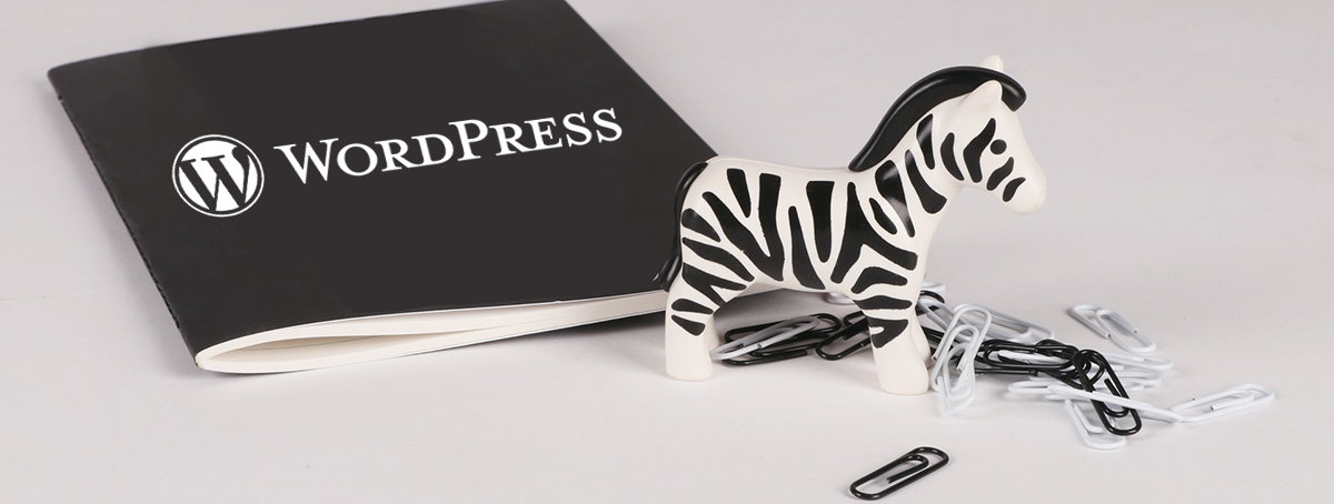 WordPress重定向wp-login.php登录到指定页面教程 (https://www.yunsxr.com/) WordPress开发教程 第1张
