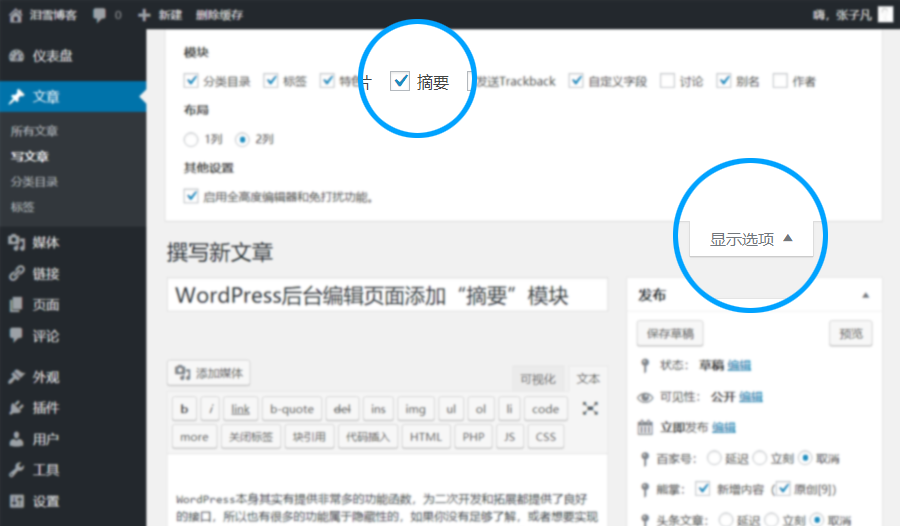 "WordPress 编辑页面添加""摘要""模块 (https://www.yunsxr.com/) WordPress基础教程 第2张"