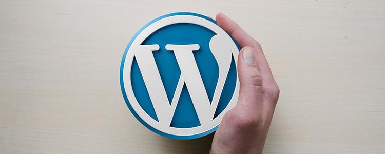 WordPress插入图片使用完整尺寸 (https://www.yunsxr.com/) WordPress入门 第1张