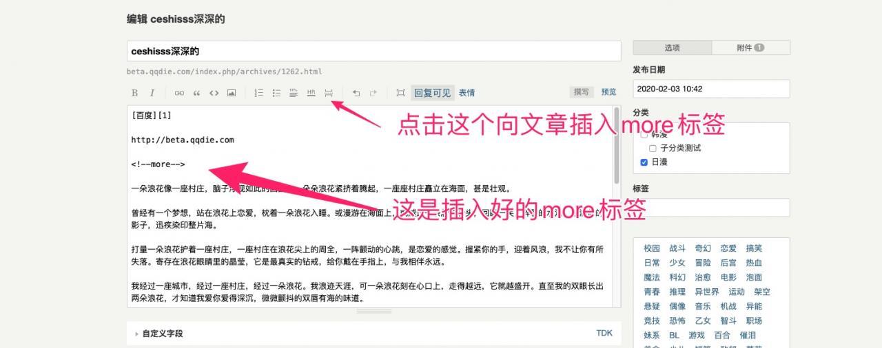 Titleshow:高级版Typecho部分内容加密插件