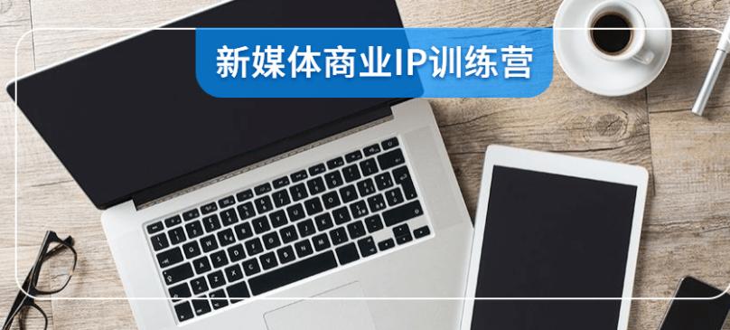 新媒体商业IP训练营视频课程[完结]
